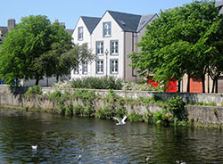 Riverbank Apartments Nairn